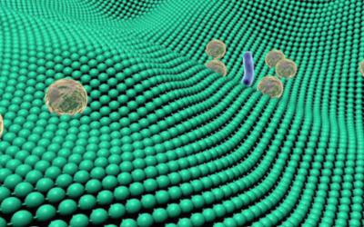 Arazzolta uusia, hygieenisempiä ja bakteereita vähentäviä materiaaleja.